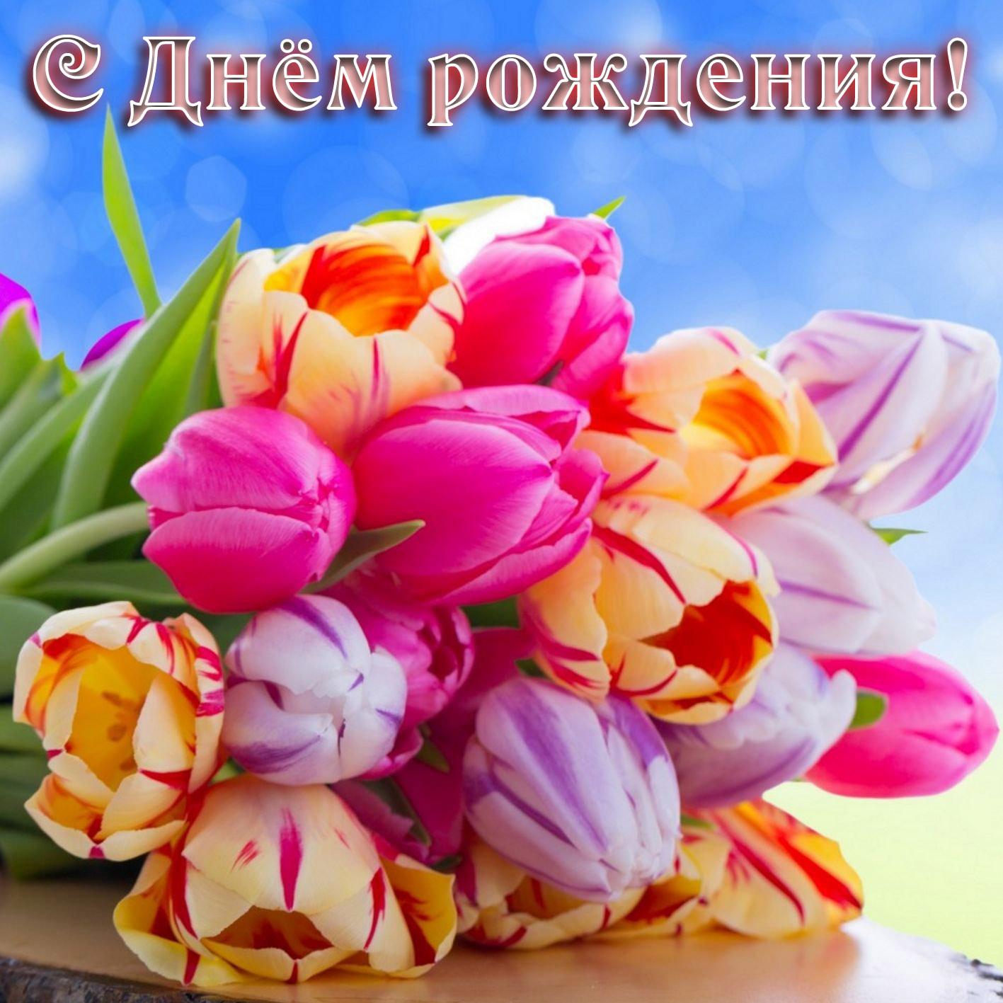 Женщине. Букет тюльпанов на День рождения. С Днём рождения!
