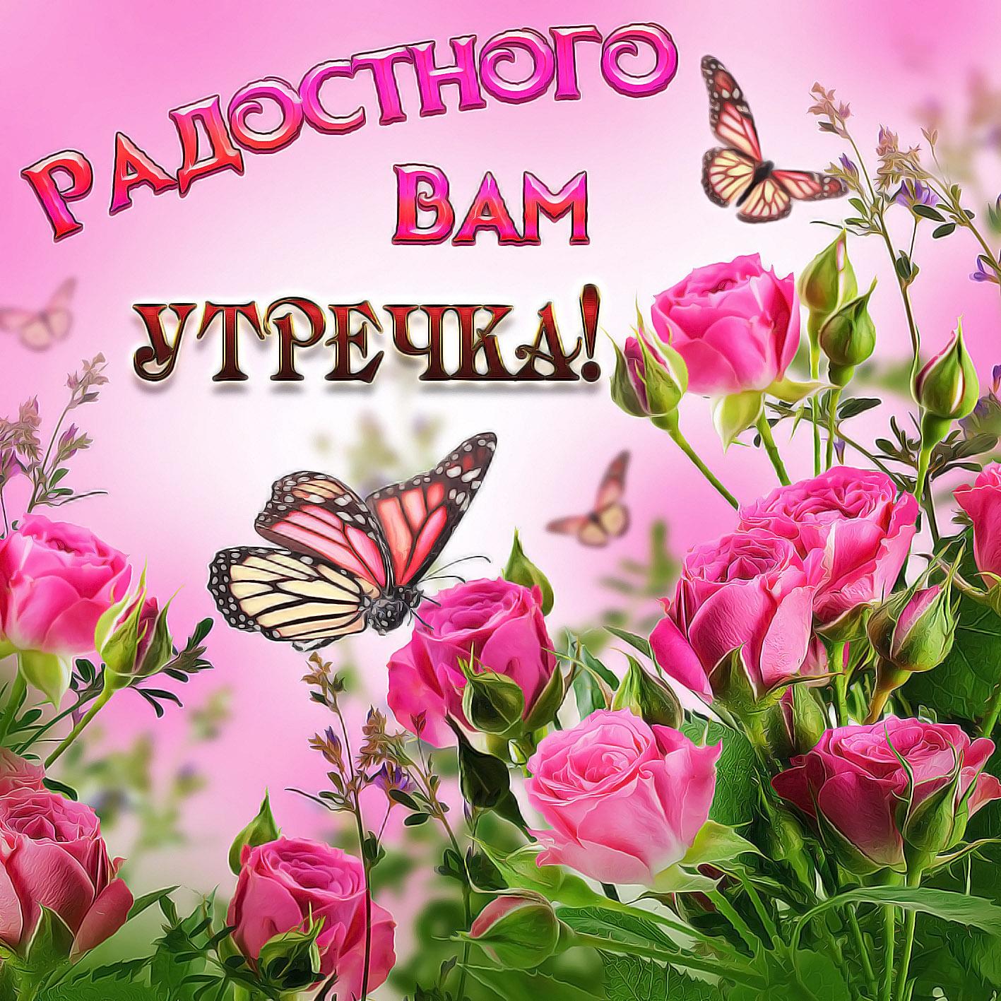 https://kartinki-life.ru/articles/2018/09/07/krasivye-otkrytki-kartinki-s-dobrym-utrom-chast-2-aya-txt-1.jpg