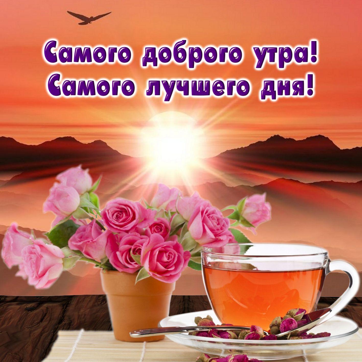 Красивые открытки с пожеланиями любимой доброго утра и хорошего дня, днем рождения картинки
