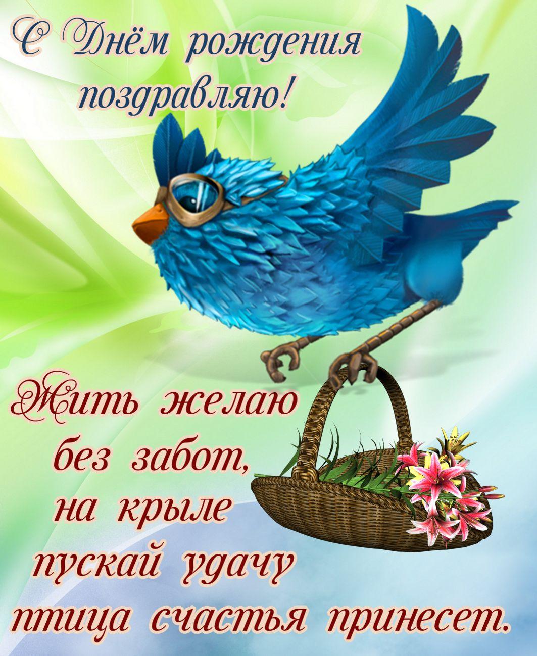 Открытки для девушек птички, добрым утром картинки