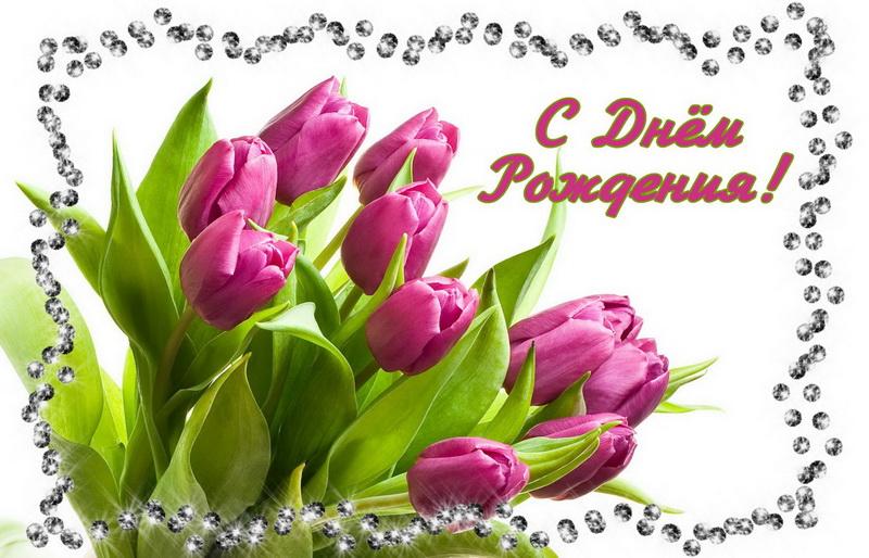 открытка с днем рождения красивый букет тюльпанов часто сравнивают бабочкой