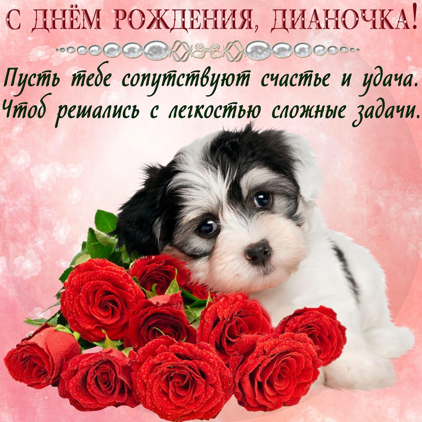 Открытка с Днем рождения - милый песик с красными розами для Дианочки