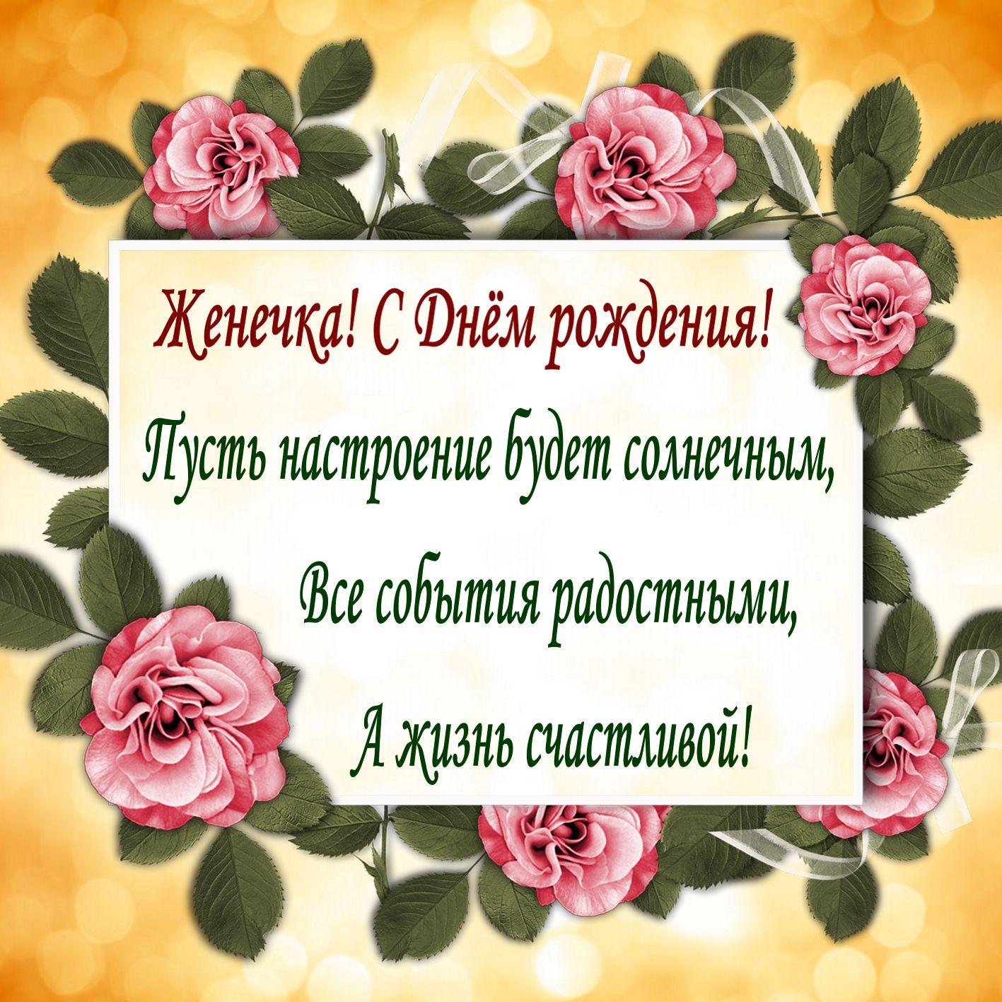 Открытка с поздравлением среди роз Евгении на День рождения