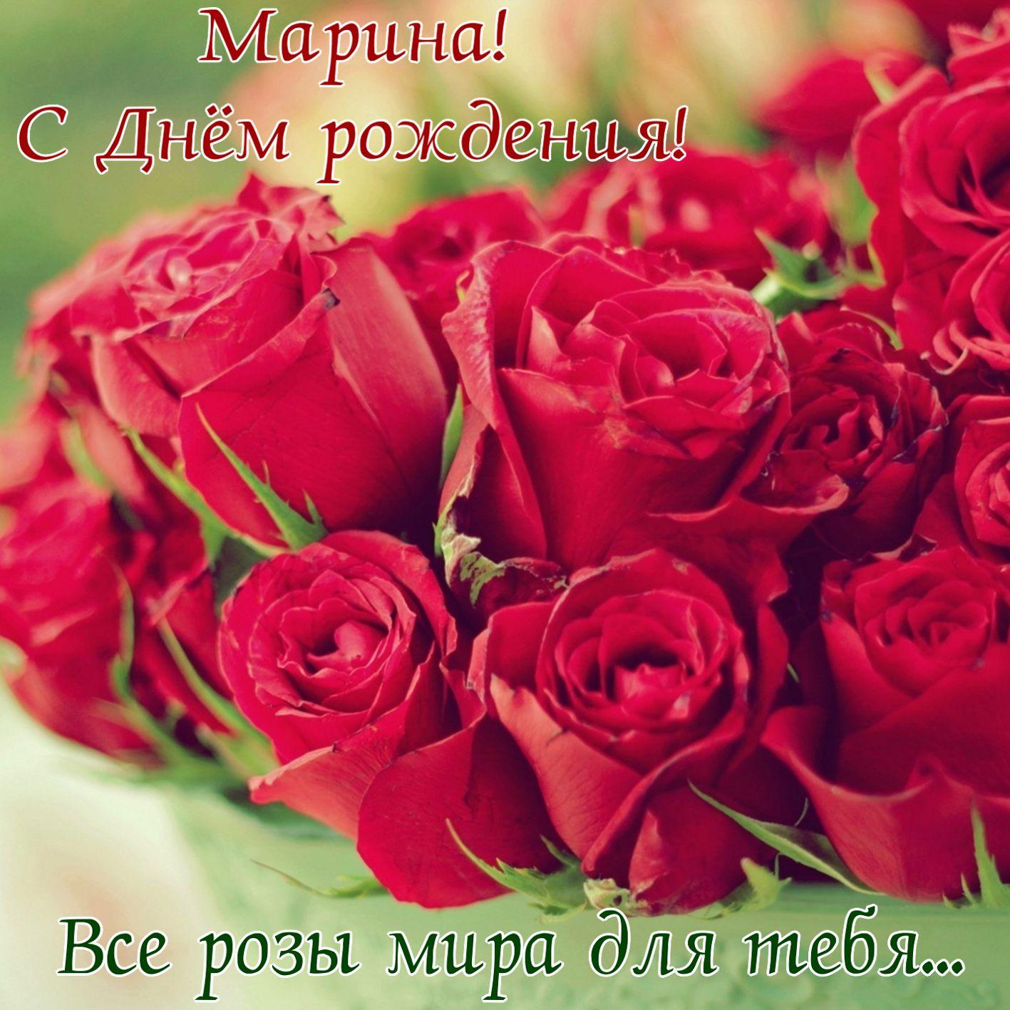 Все розы мира на День рождения Марине