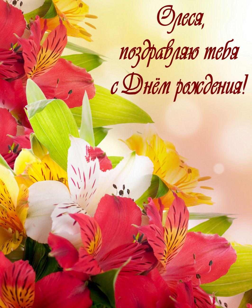 Поздравление с днём рождения олесе красивое в стихах фото 243