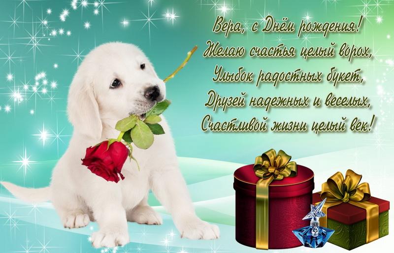 Поздравление с днем рождения открытка собака, суши роллы надписями