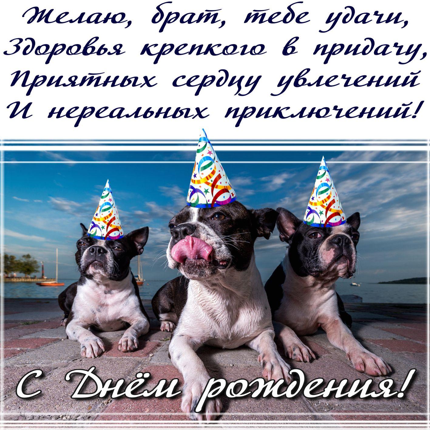 Поздравления день рождения прикол брат