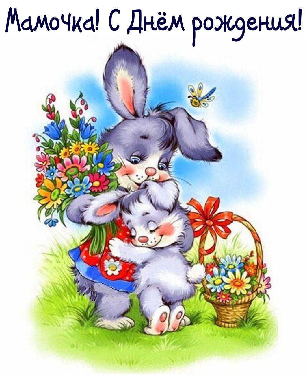 поздравление зайца с днем рождения сына всего, судя фото