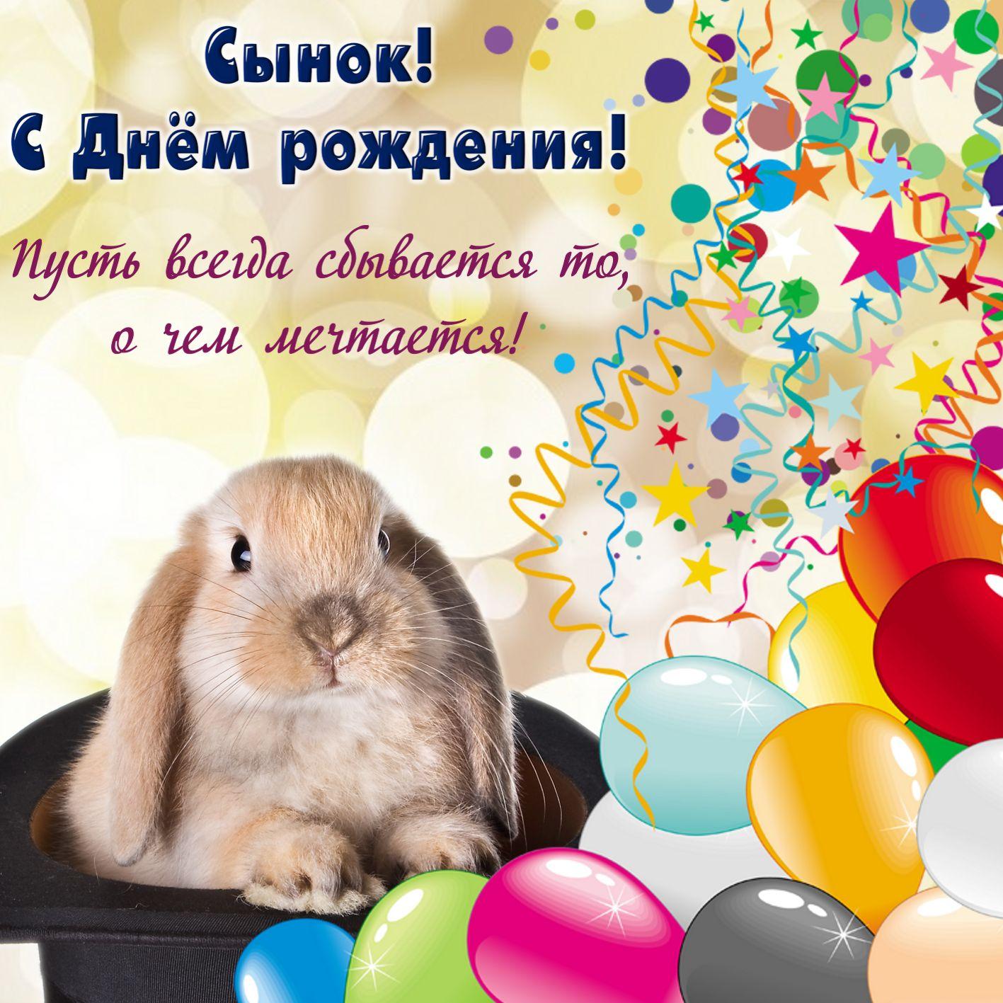 поздравление зайца с днем рождения сына она еще