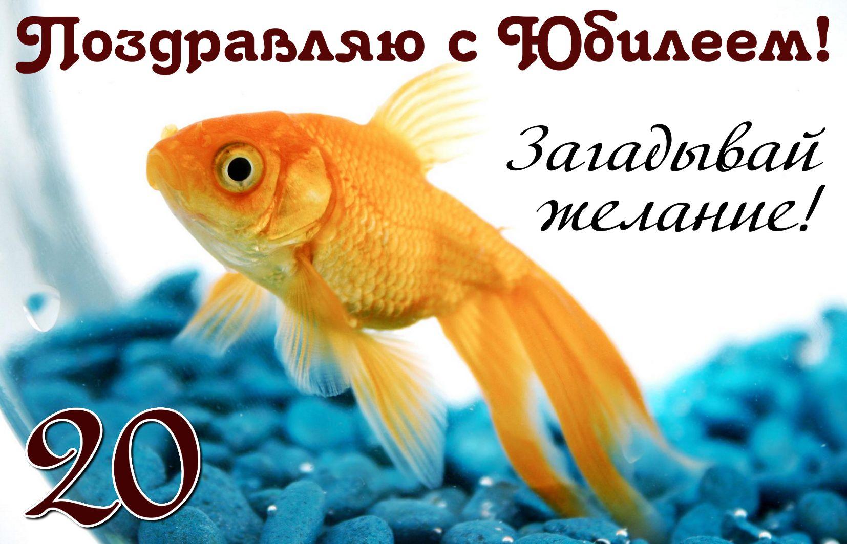Открытка с золотой рыбкой на фоне синих камешков