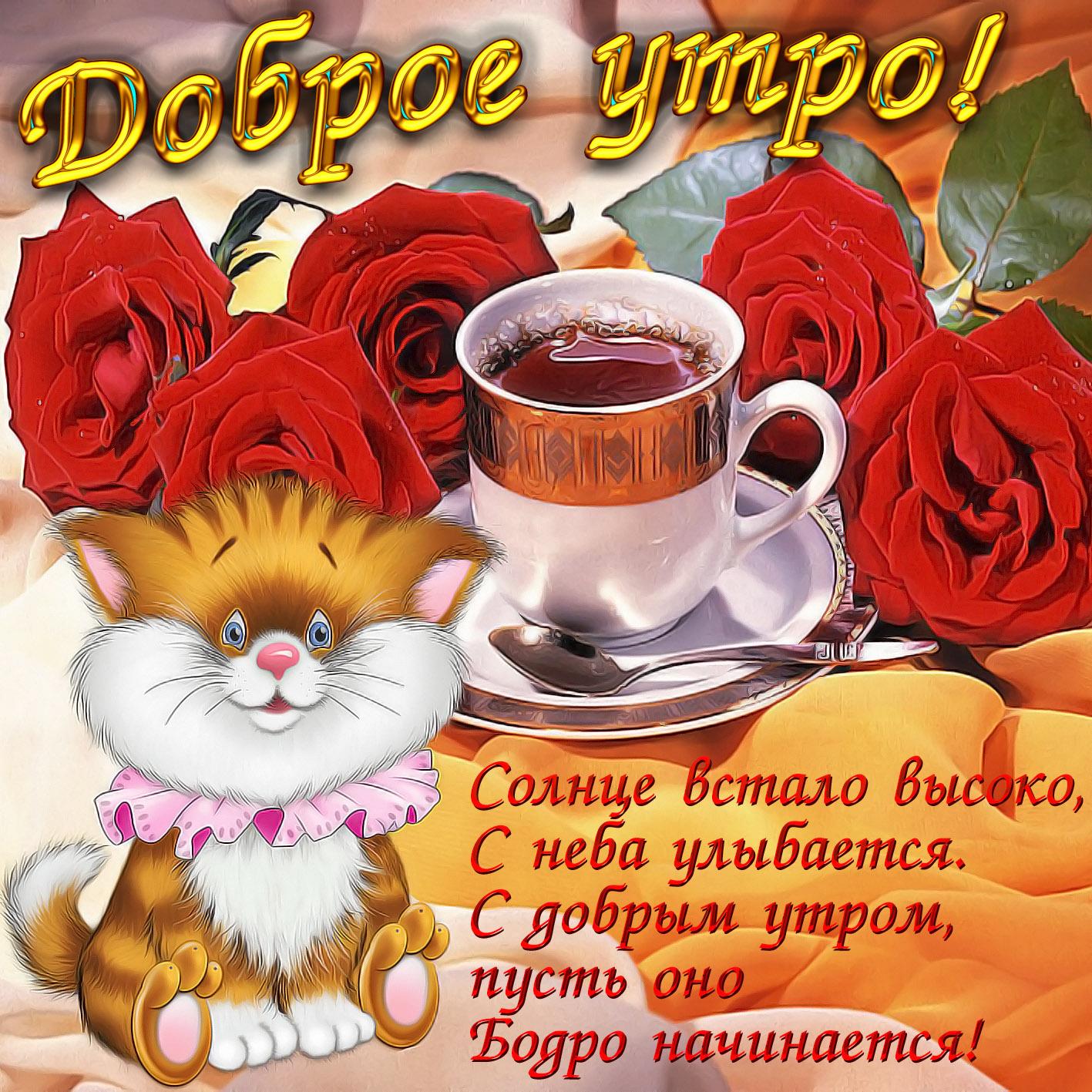 пожелать доброе утро прикольно в картинках собчак советский российский