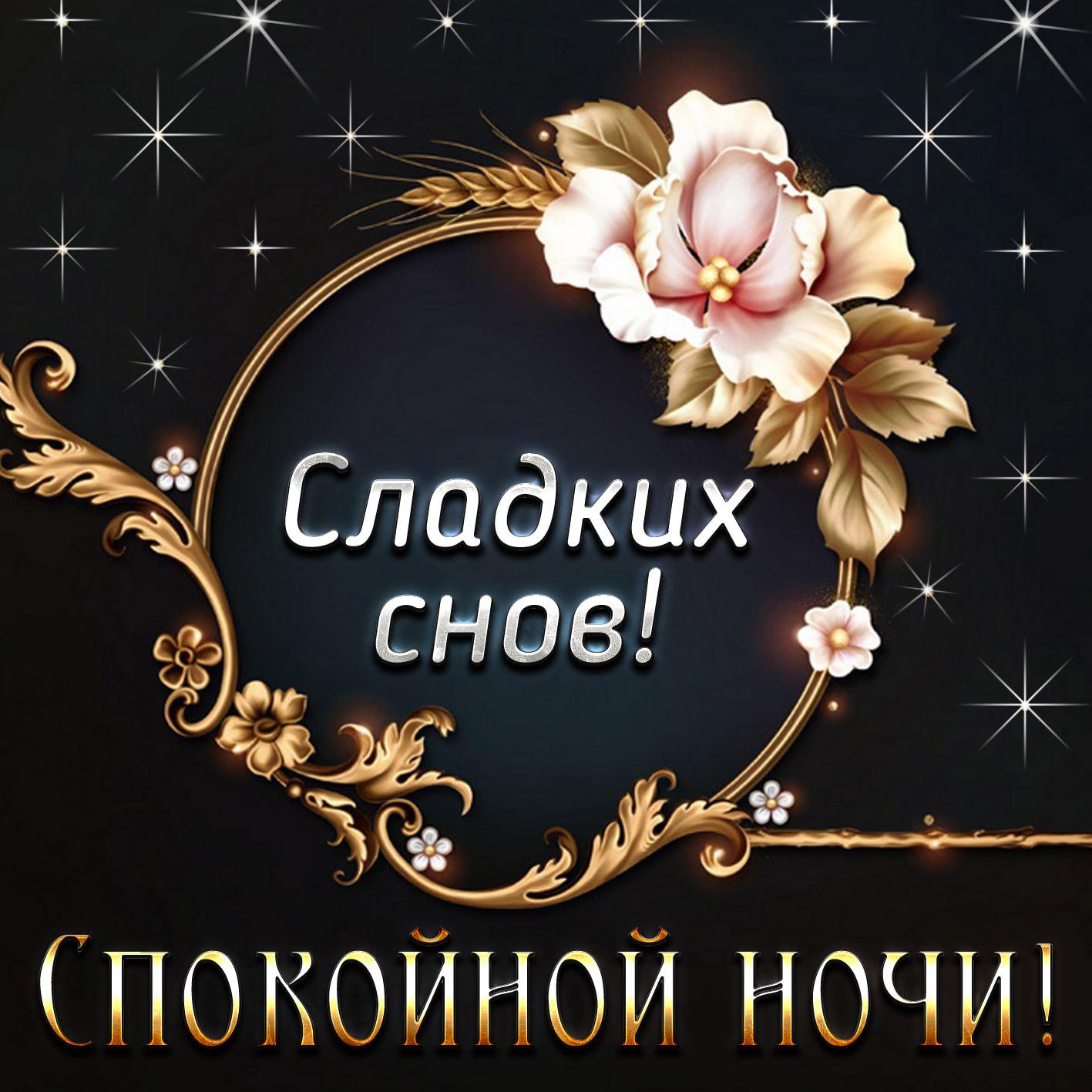 всякого сомнения восточные пожелания доброй ночи некоторых