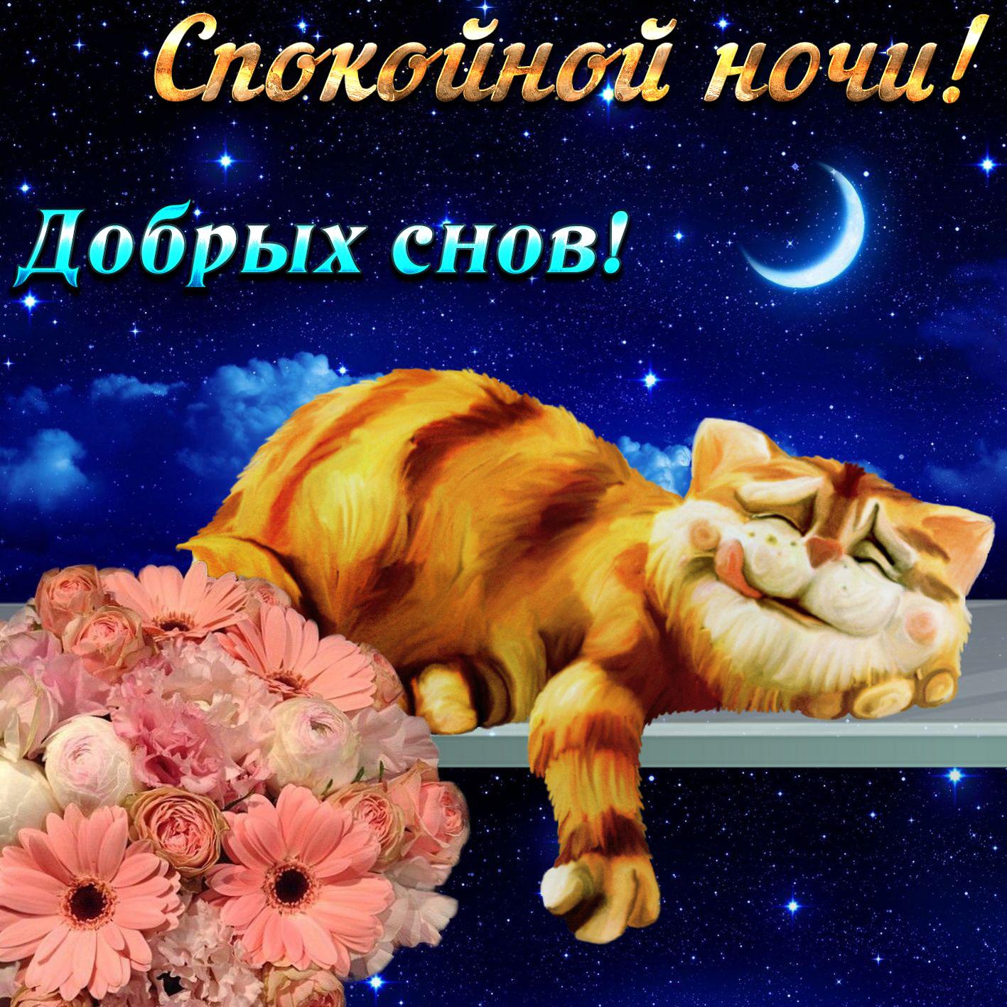 Открытка спокойной ночи добрых снов природа