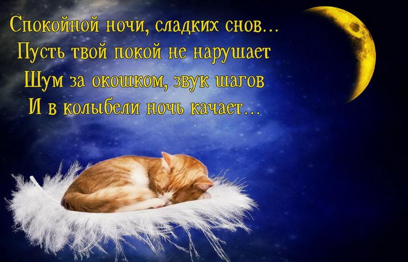 Картинки спокойной ночи мой любимый сладких снов