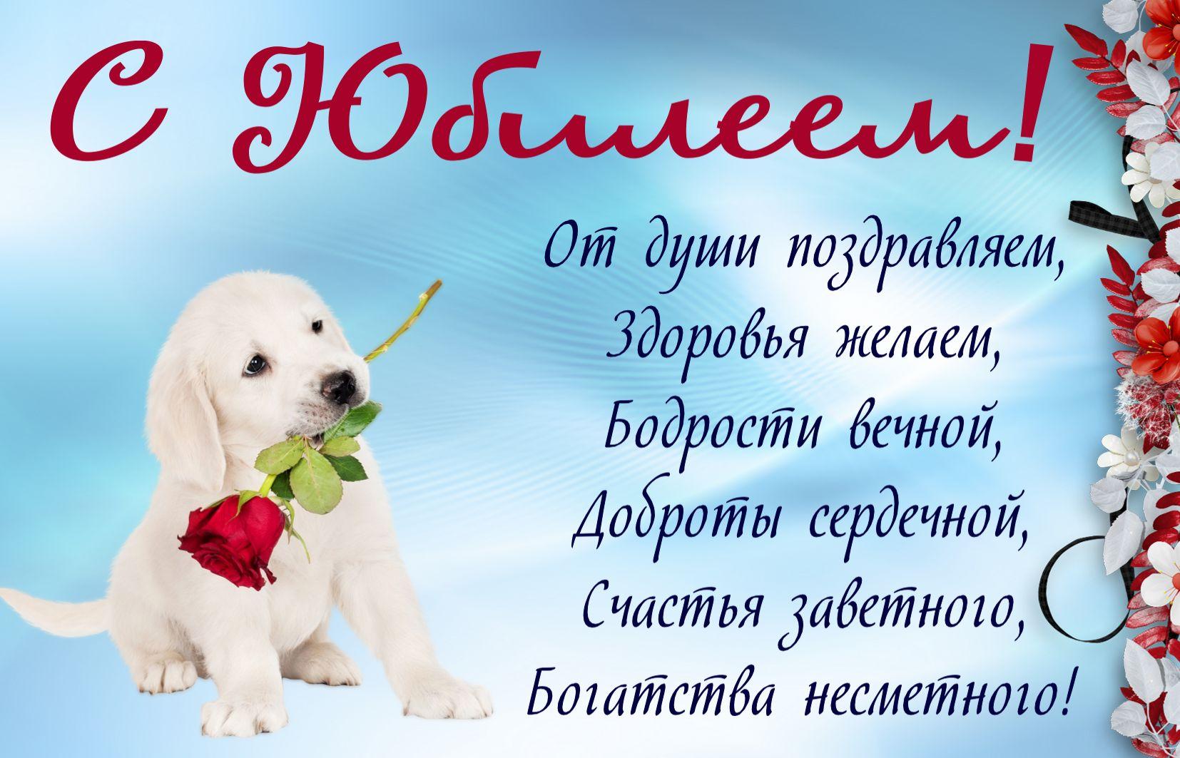 Открытки поздравления собакам