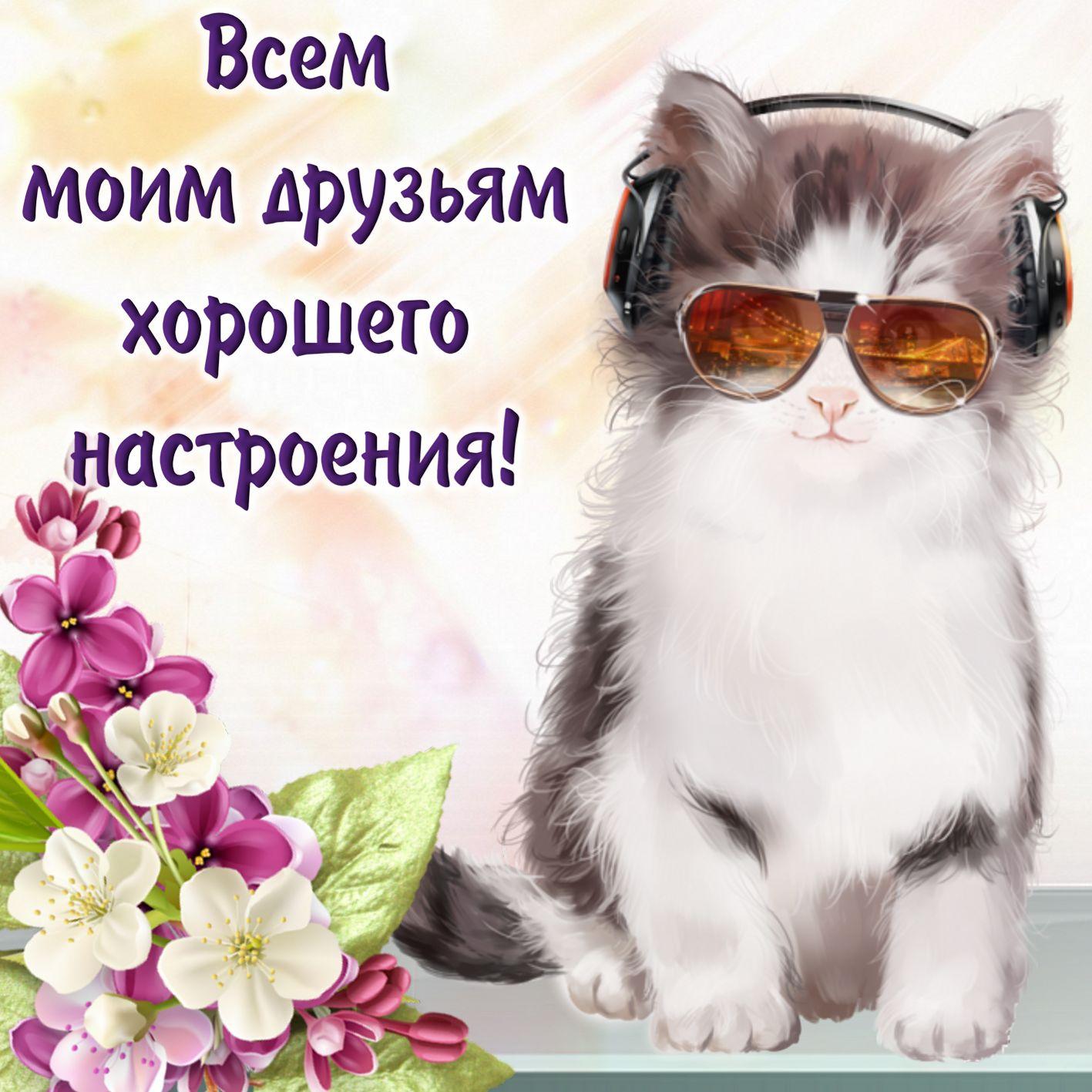 Прикольные картинки пожелания удачи и хорошего настроения, приколы апельсин открытки