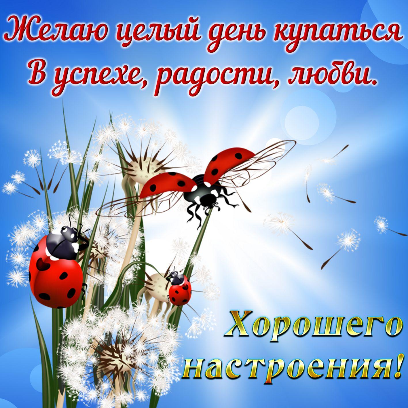 Открытки с пожеланиями хорошего дня и настроения друзьям