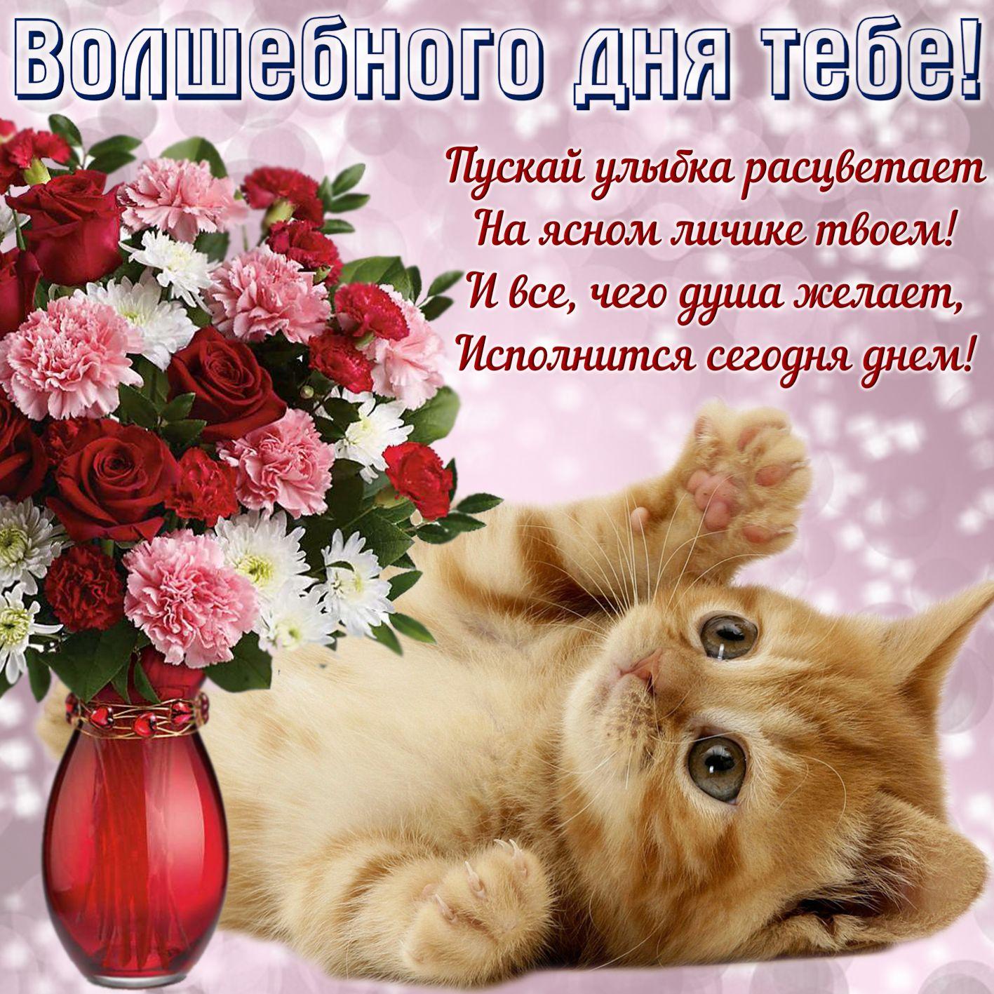 Открытки добрый день хорошего дня и прекрасного настроения