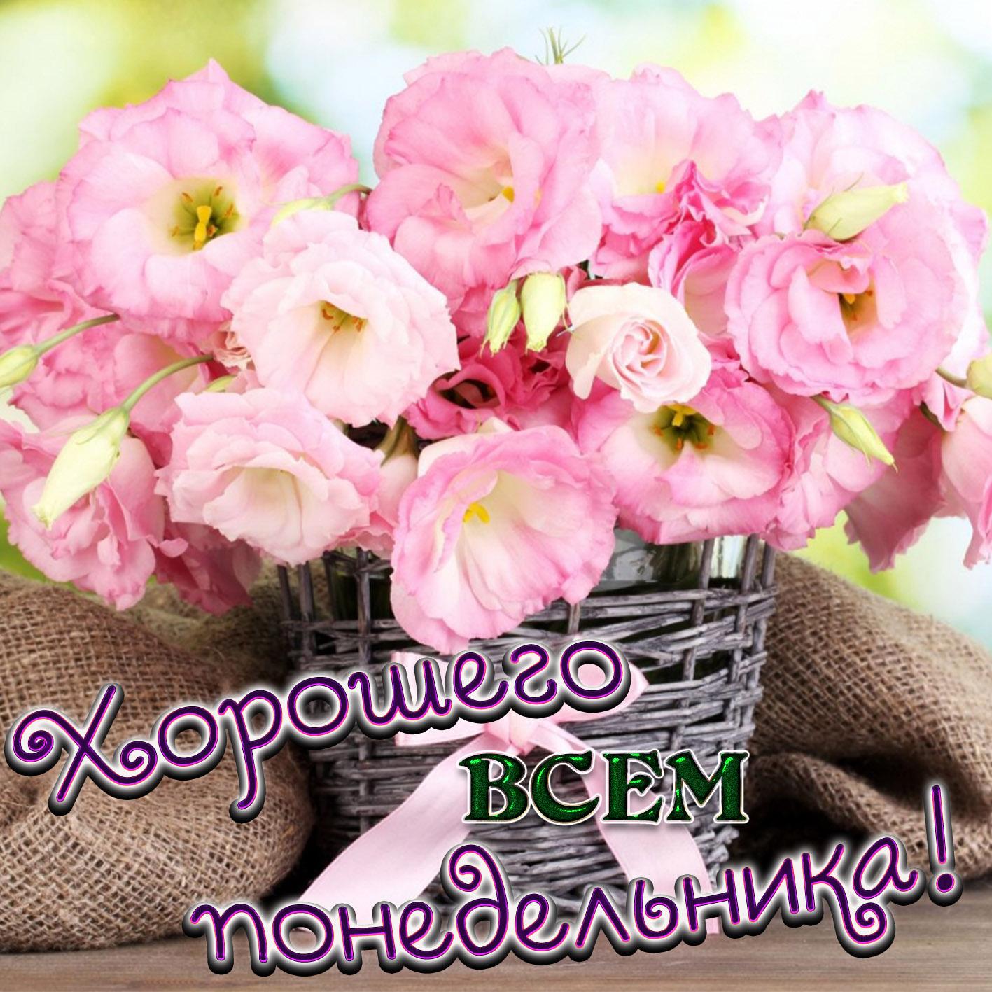 Хорошие открытки с пожеланием доброго утра и хорошей недели, привет меня хорошего