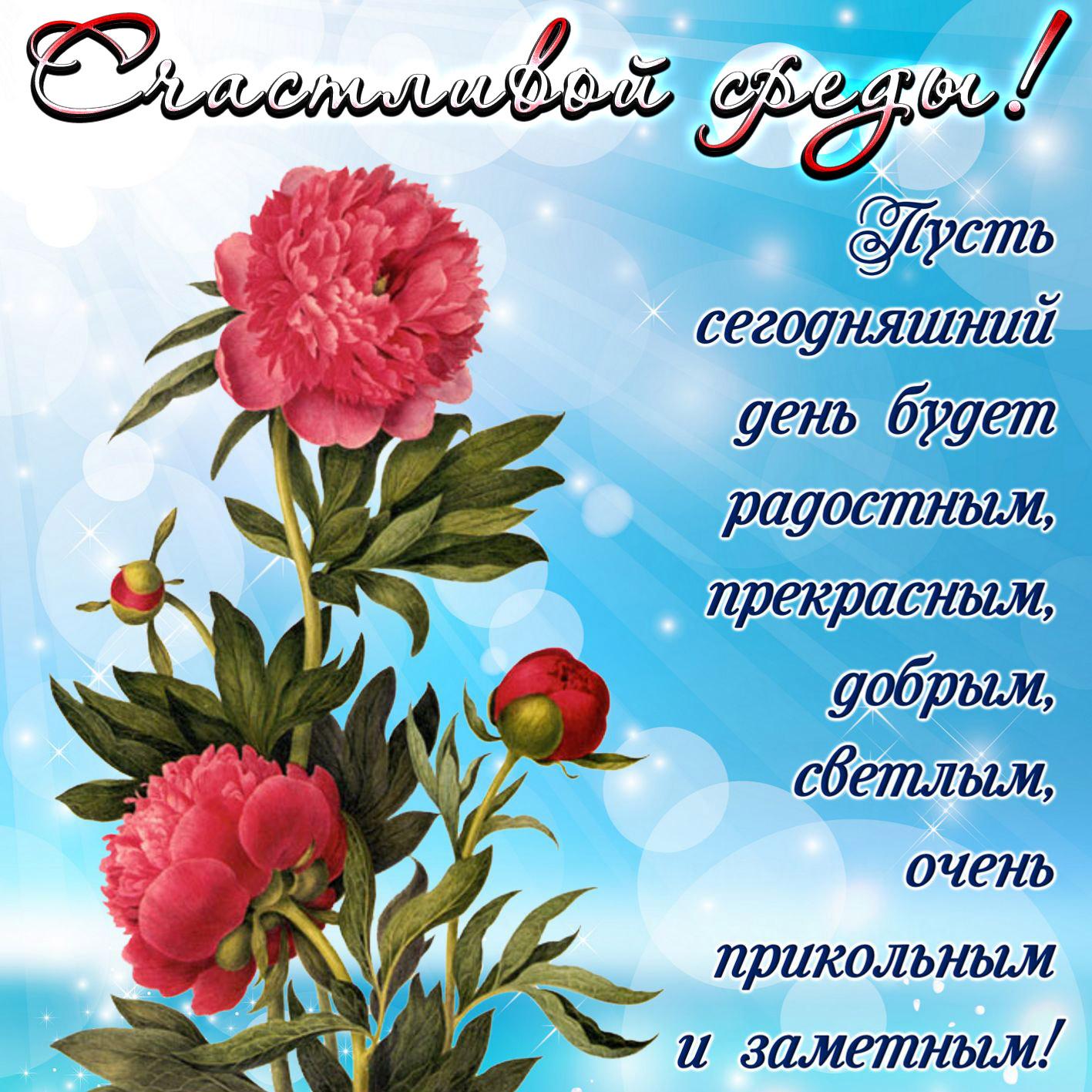 Гифки с добрым днем и хорошими пожеланиями