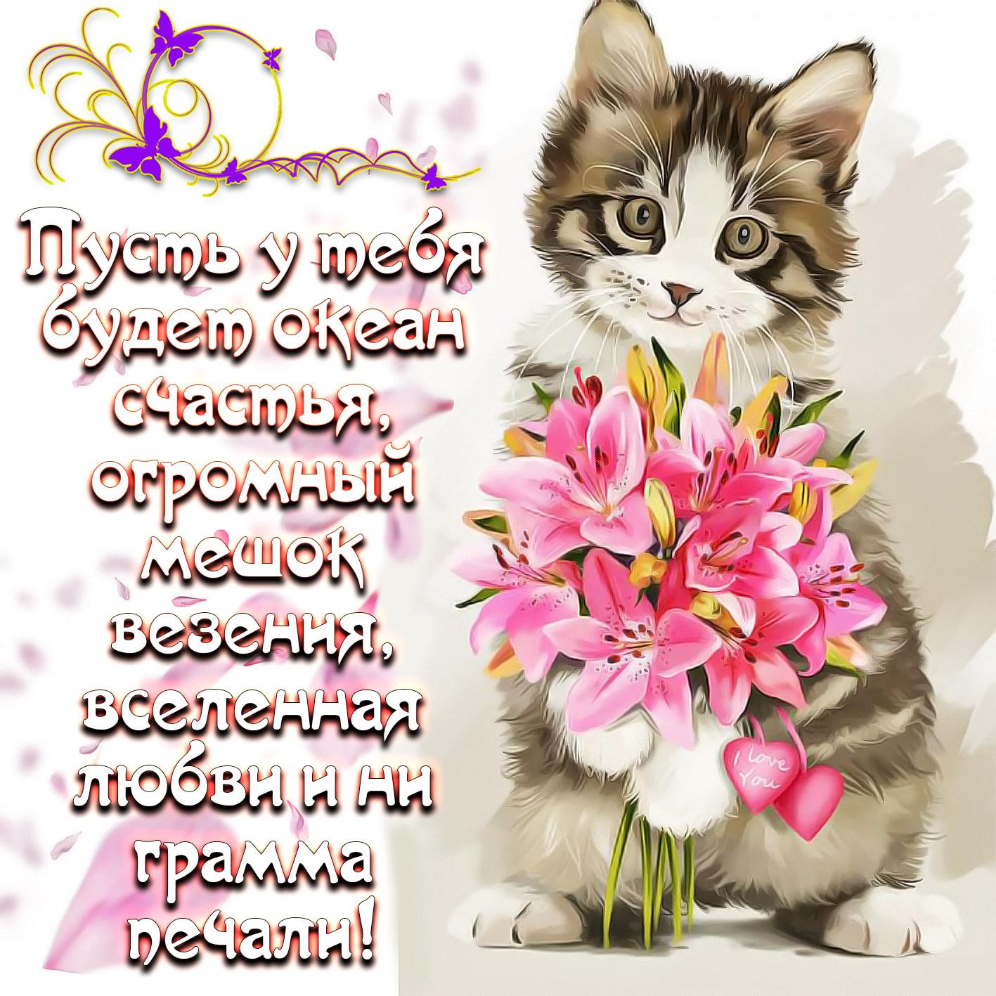 Вам рада, красивые открытки с поздравлениями и пожеланиями