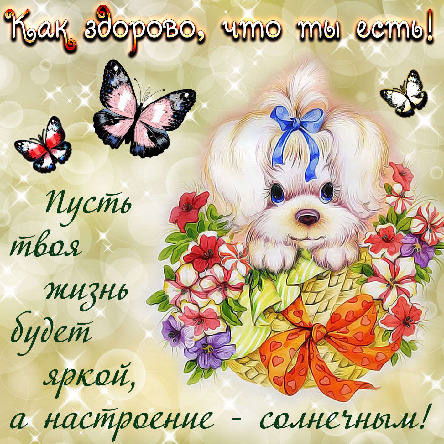 Картинки с пожеланиями счастья и хорошего дня здесь