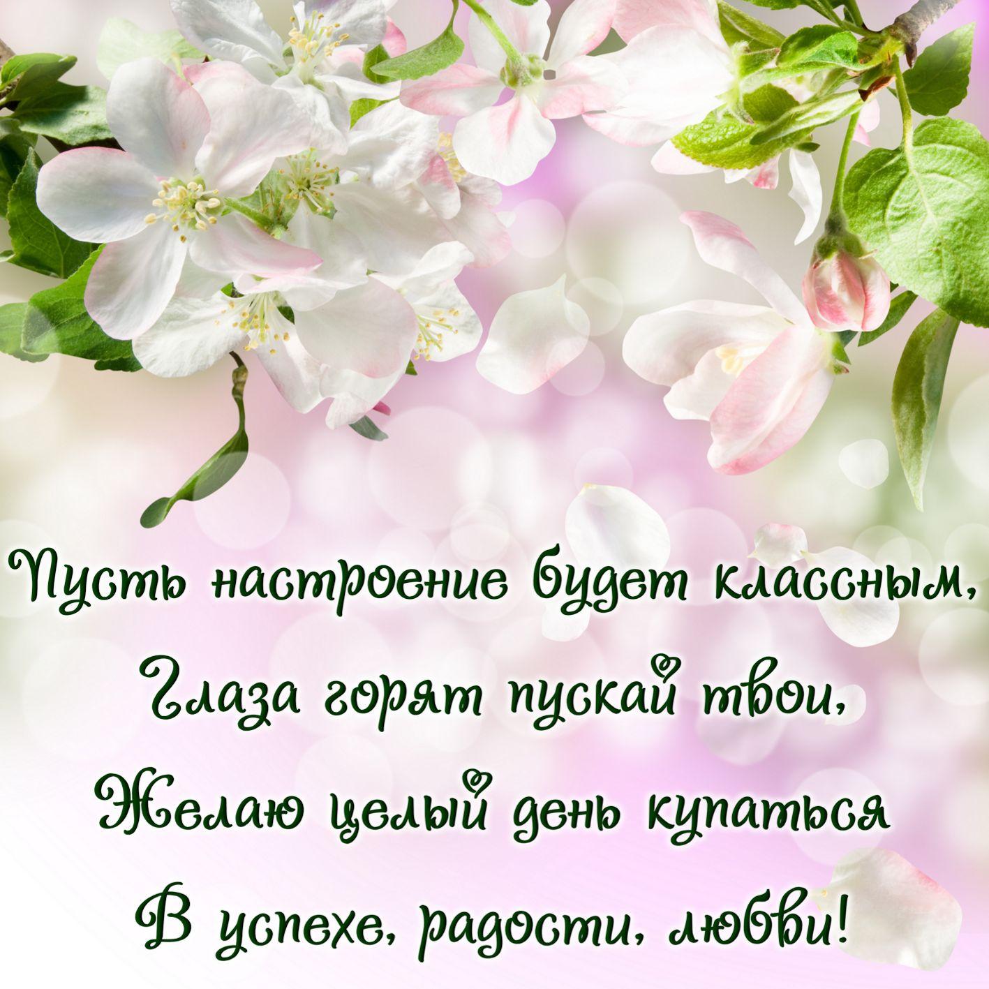 Мелочи жизни поздравления