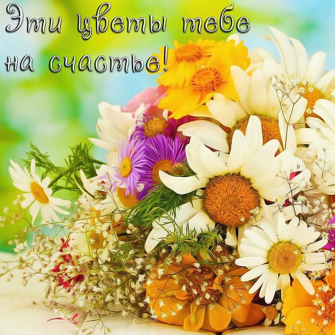 Желаю вам счастья картинки с полевыми цветами красивые