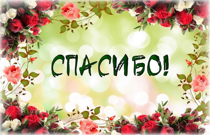 Басням, картинки цветок с надписью спасибо