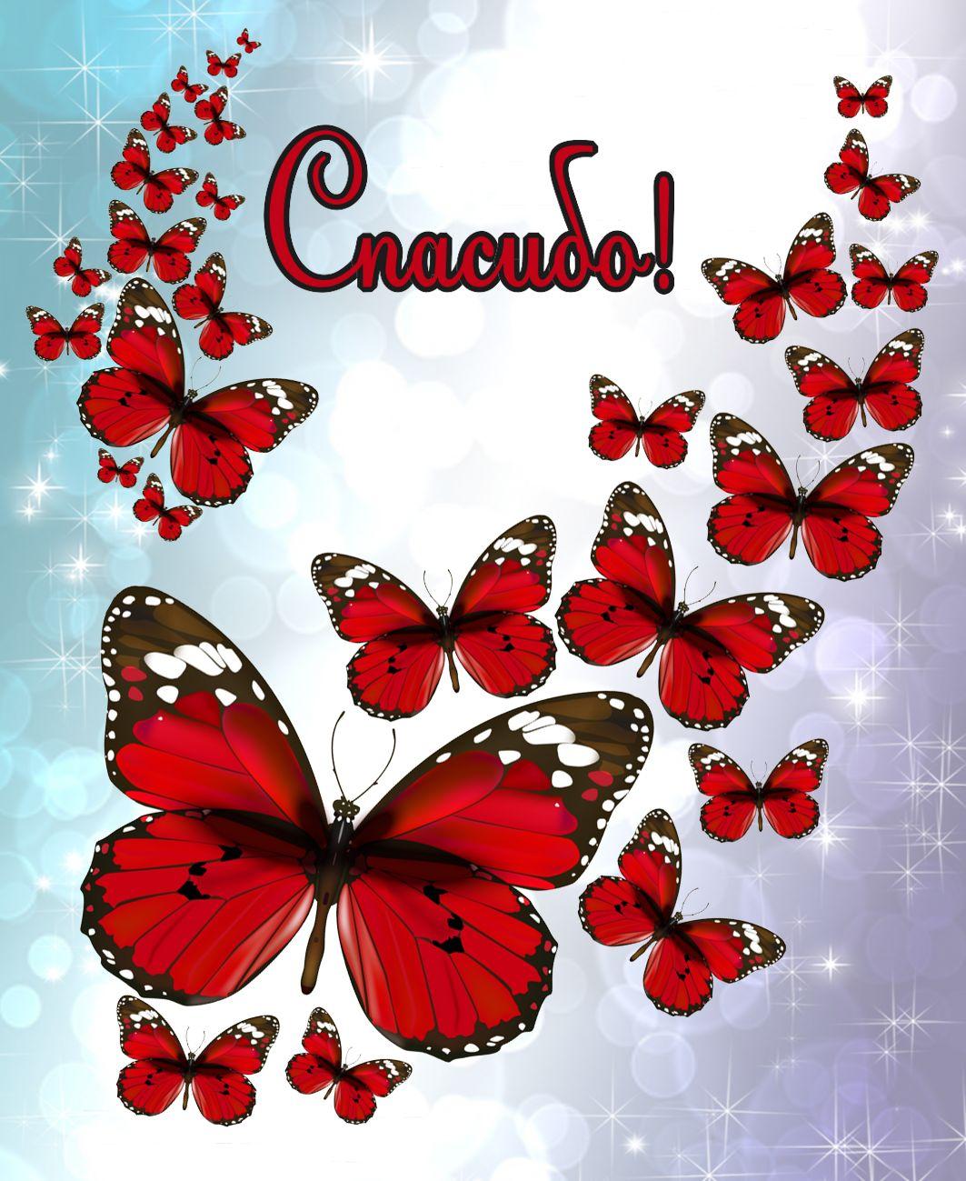 Открытка с красными бабочками - спасибо