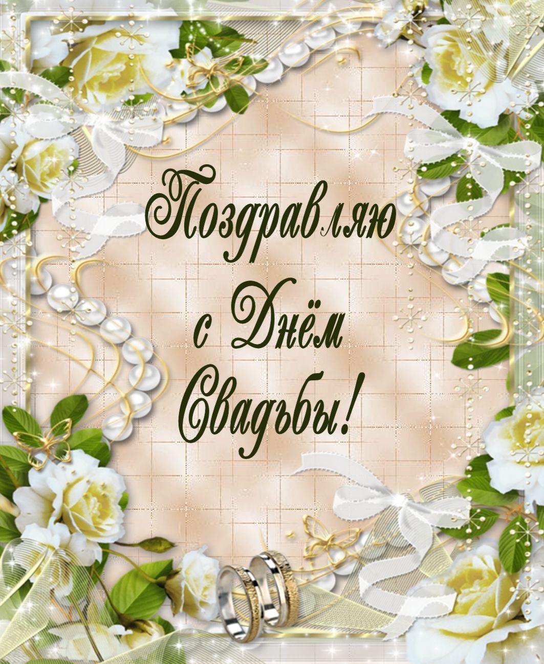 Поздравления к свадьбе цветы открытки растения интерьере