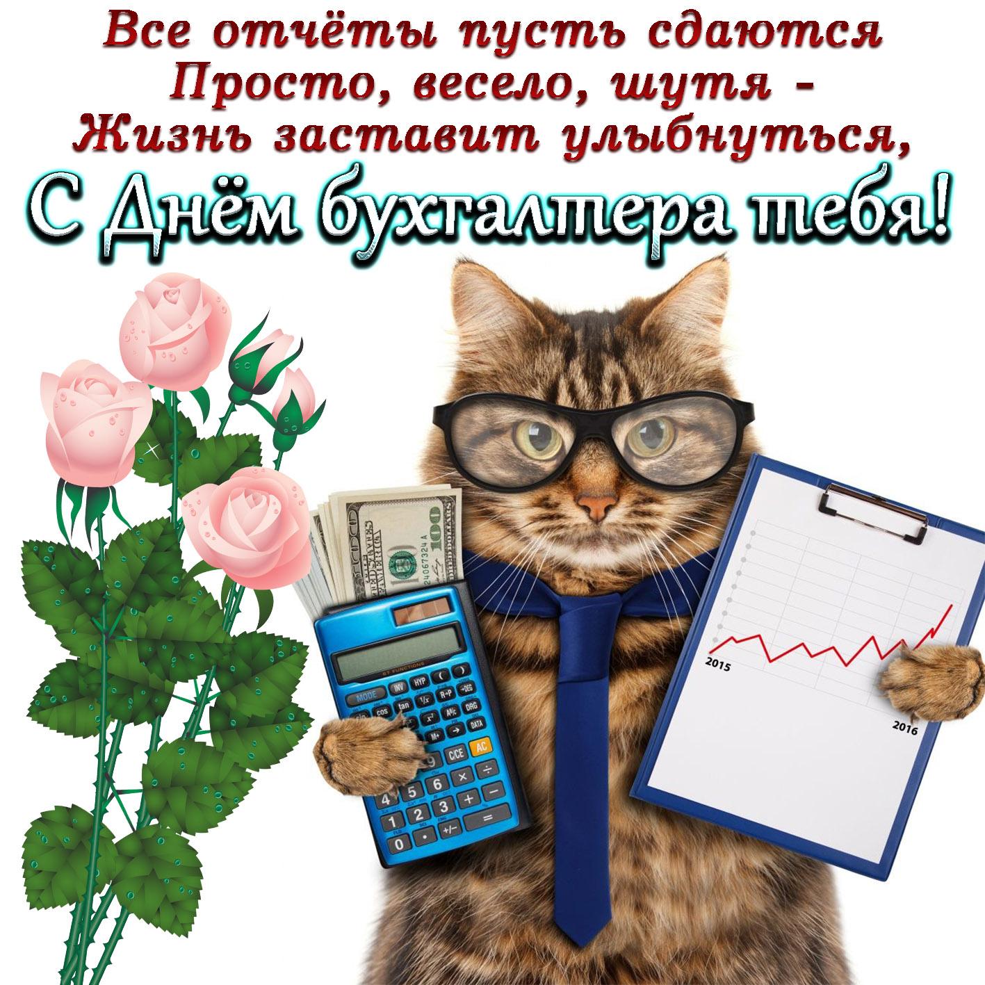 Поздравление бухгалтеру картинки