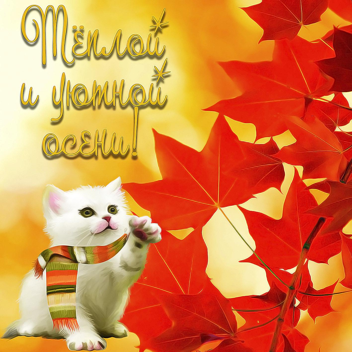 Красивые картинки поздравления с началом осени
