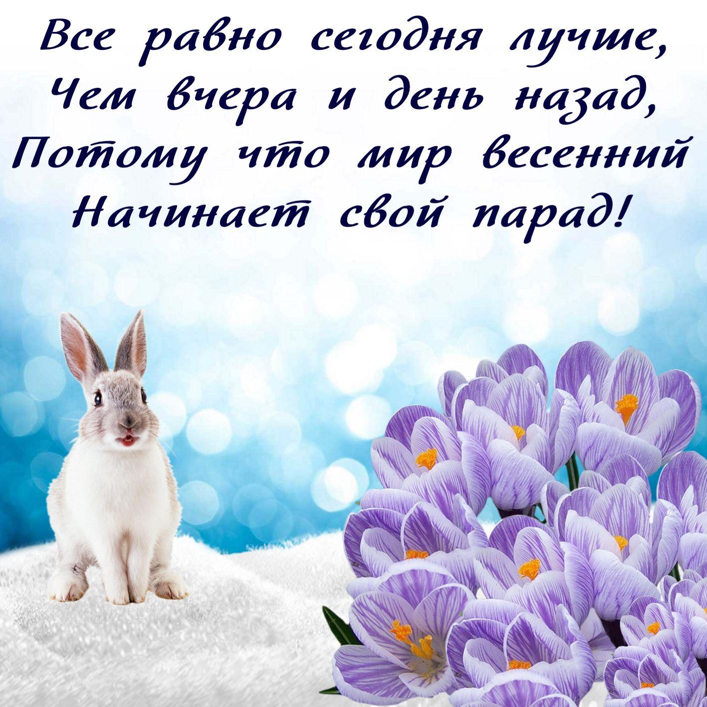 поздравления с праздником от зайцев фёдоров