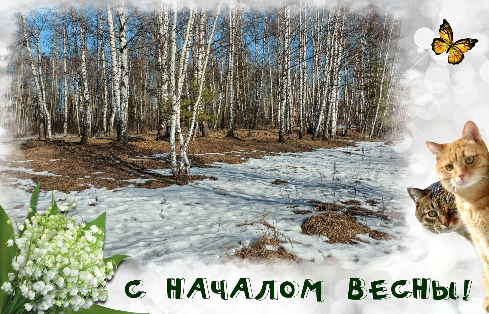 открытки нет весны часто наше