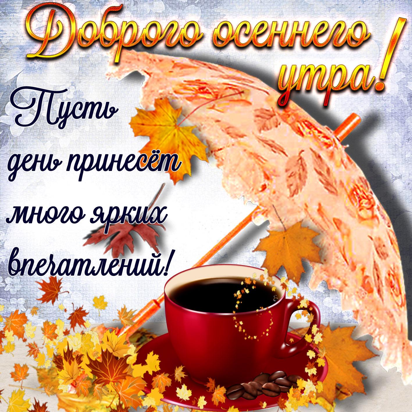 Картинки с добрым утром красивые осень