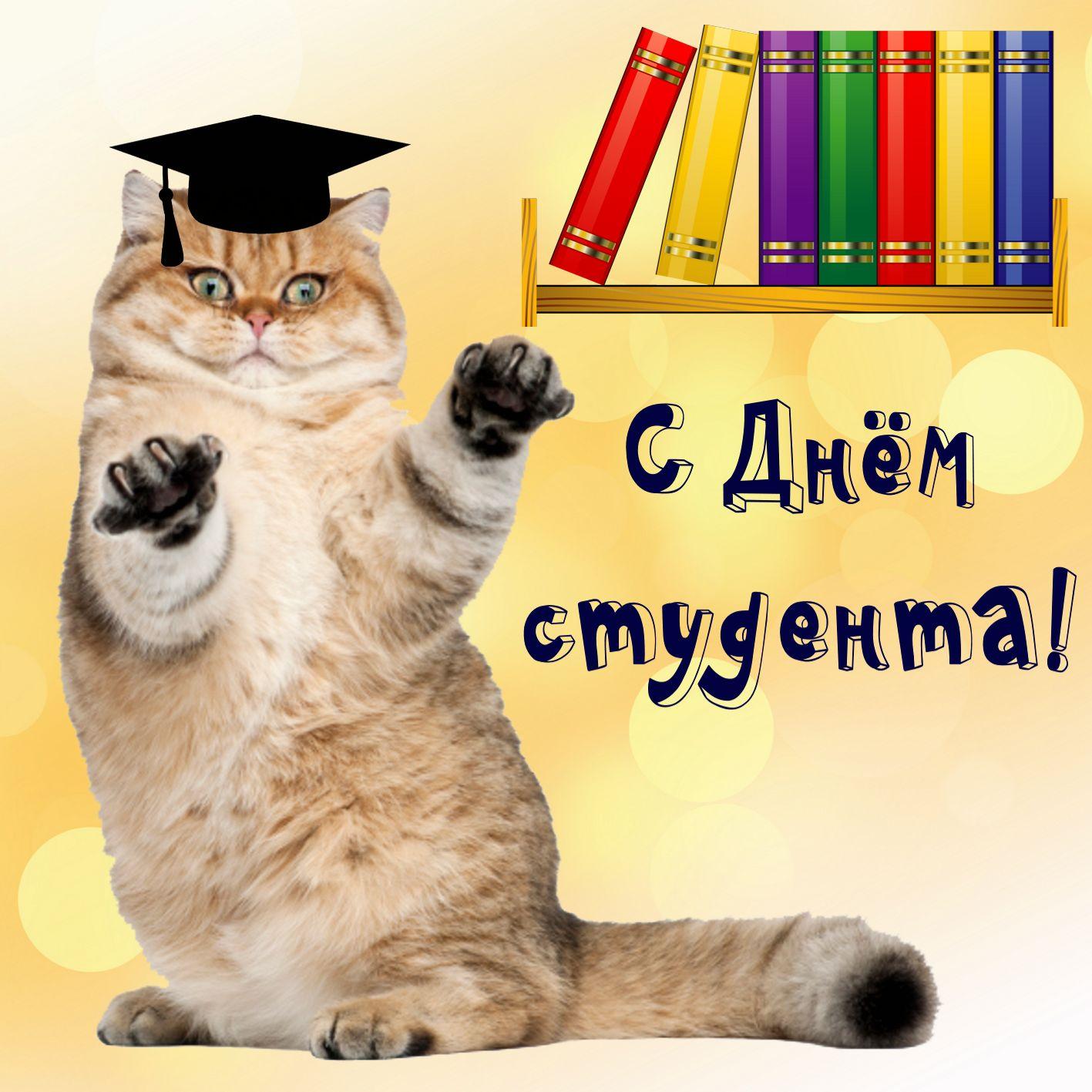 Поздравления с днем студента открытка