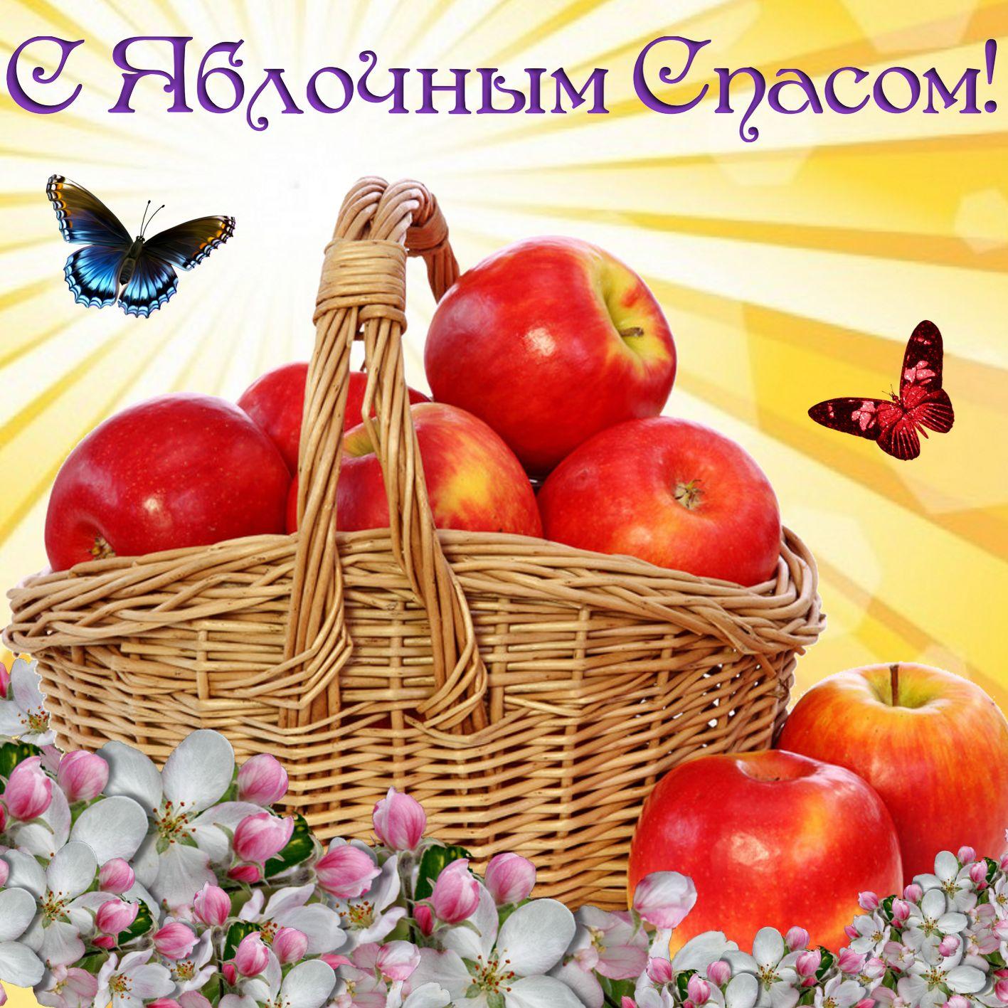 если оформить яблочный спас поздравлялки в картинках без проблем будут