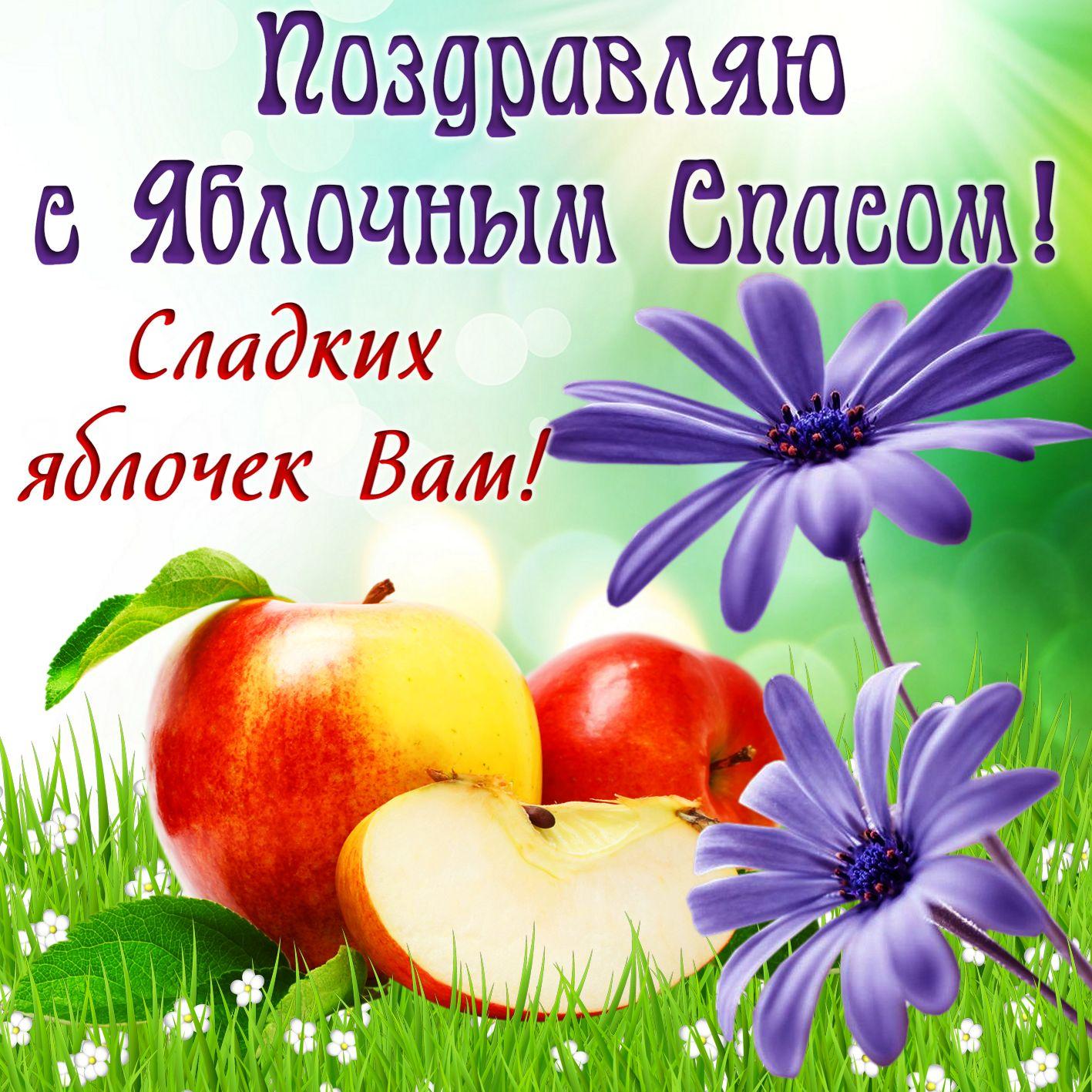 Картинки на яблочный спас прикольные
