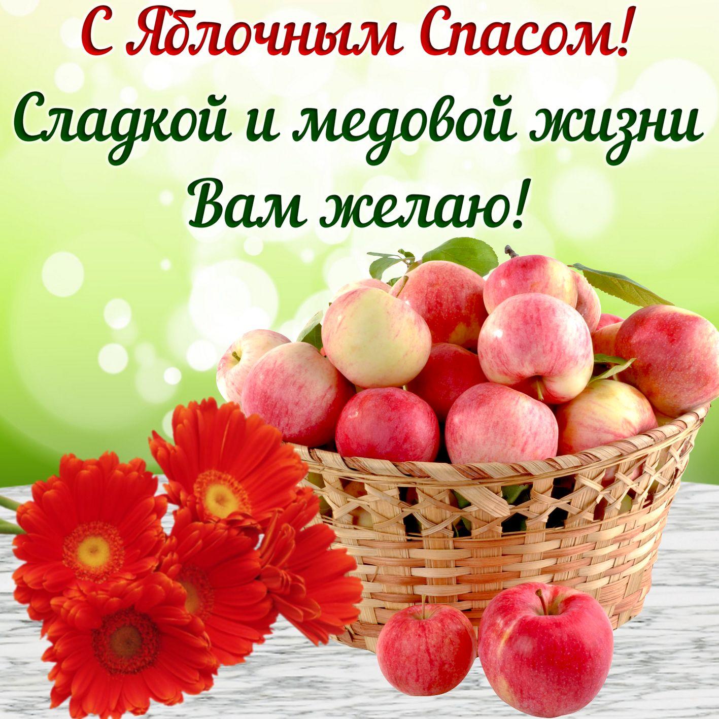 верный поздравления в стихах к яблочному спасу жизнелюб оптимист