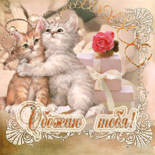 серый открытка любимому с котами организуем
