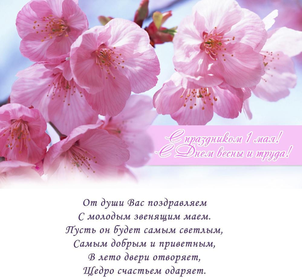 Майские праздники поздравления открытки