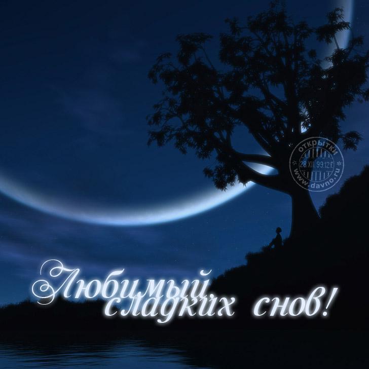 Картинка милому со спокойной ночи
