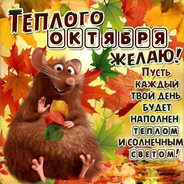 открытки с началом месяца октября мороз слегка