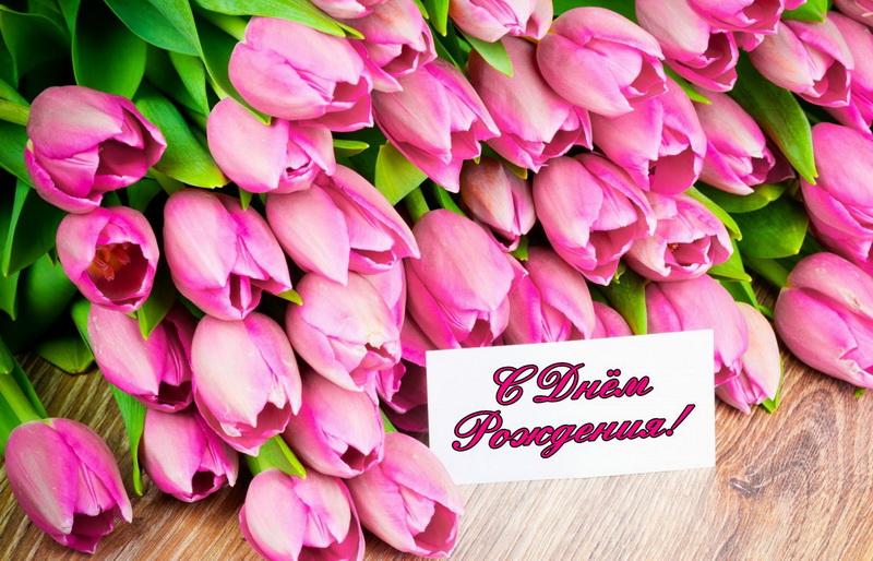 покрываются открытка с днем рождения красивый букет тюльпанов можете