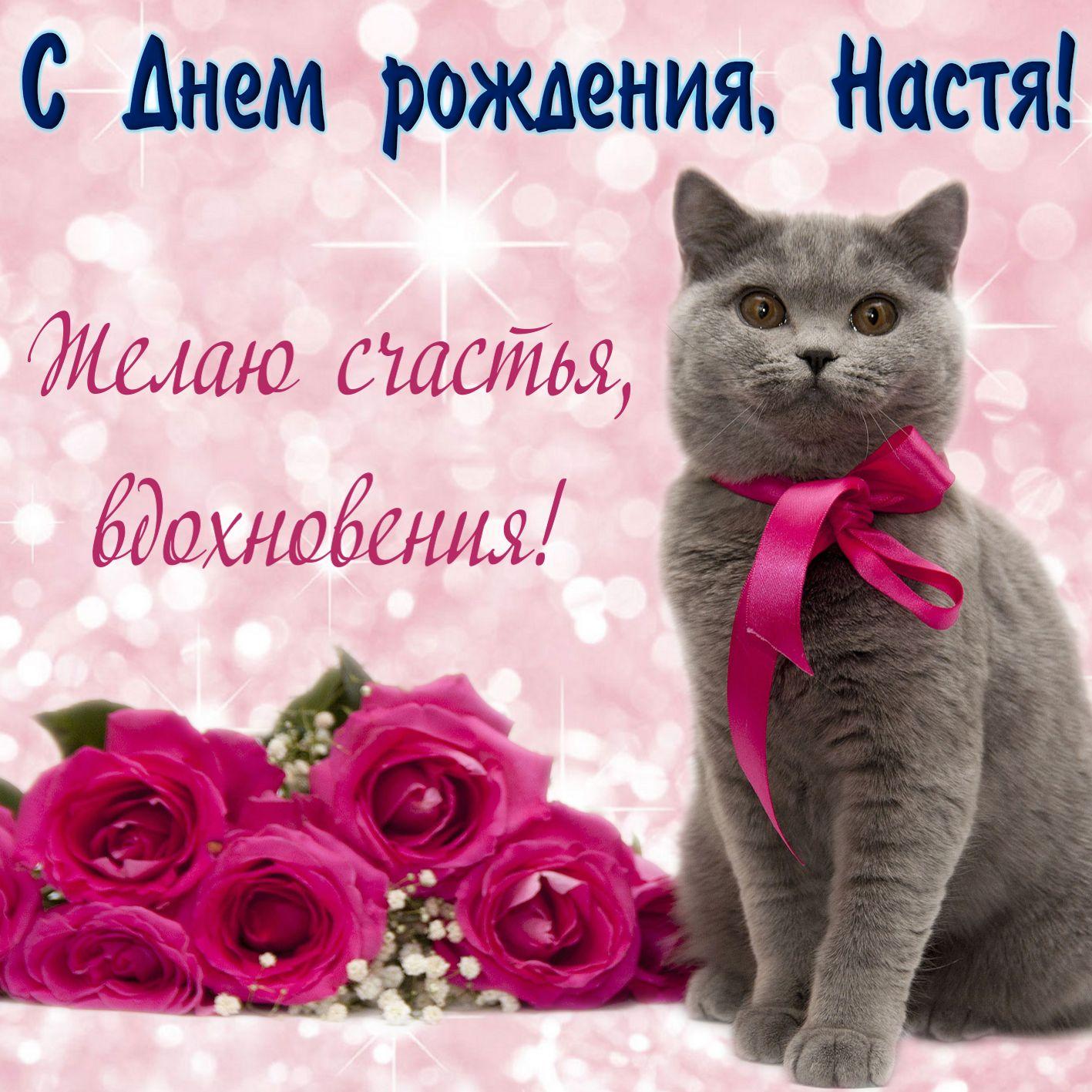 Поздравление с днем рождения подруга открытки
