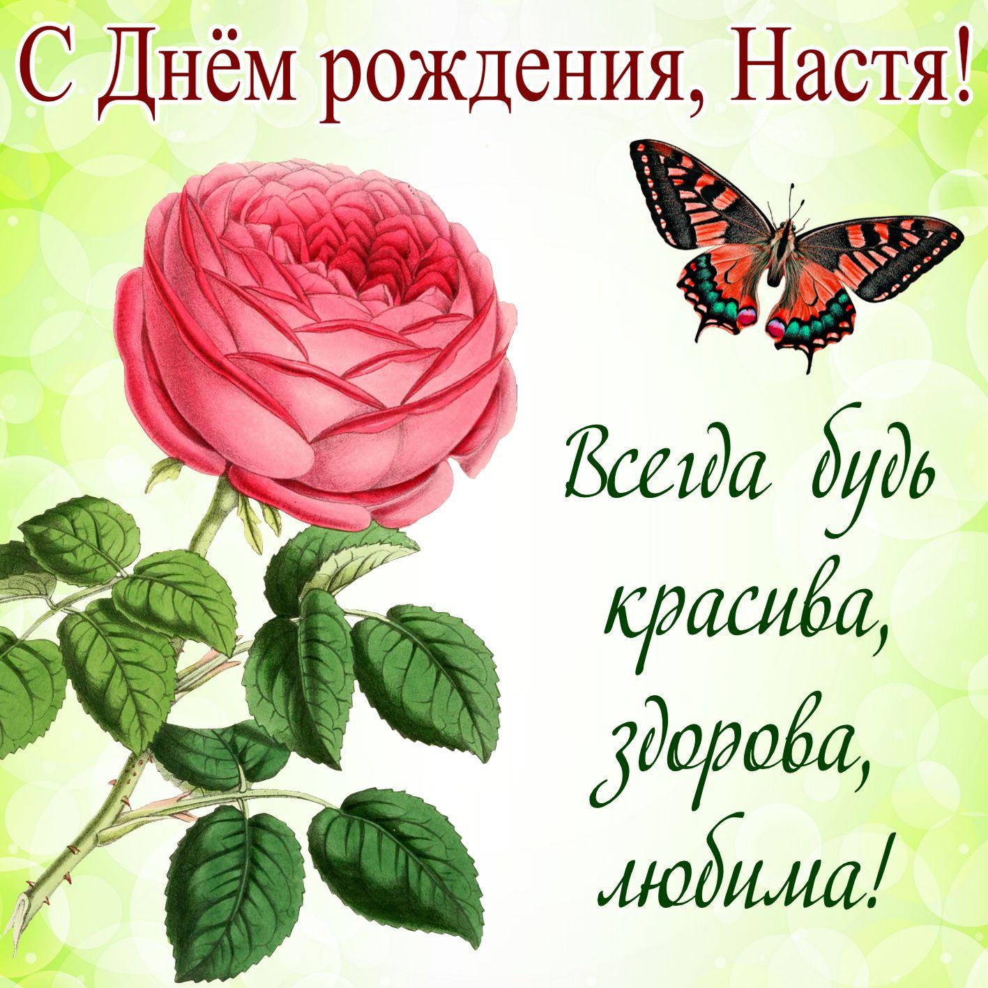 Поздравления с днем рождения прикольные для любы