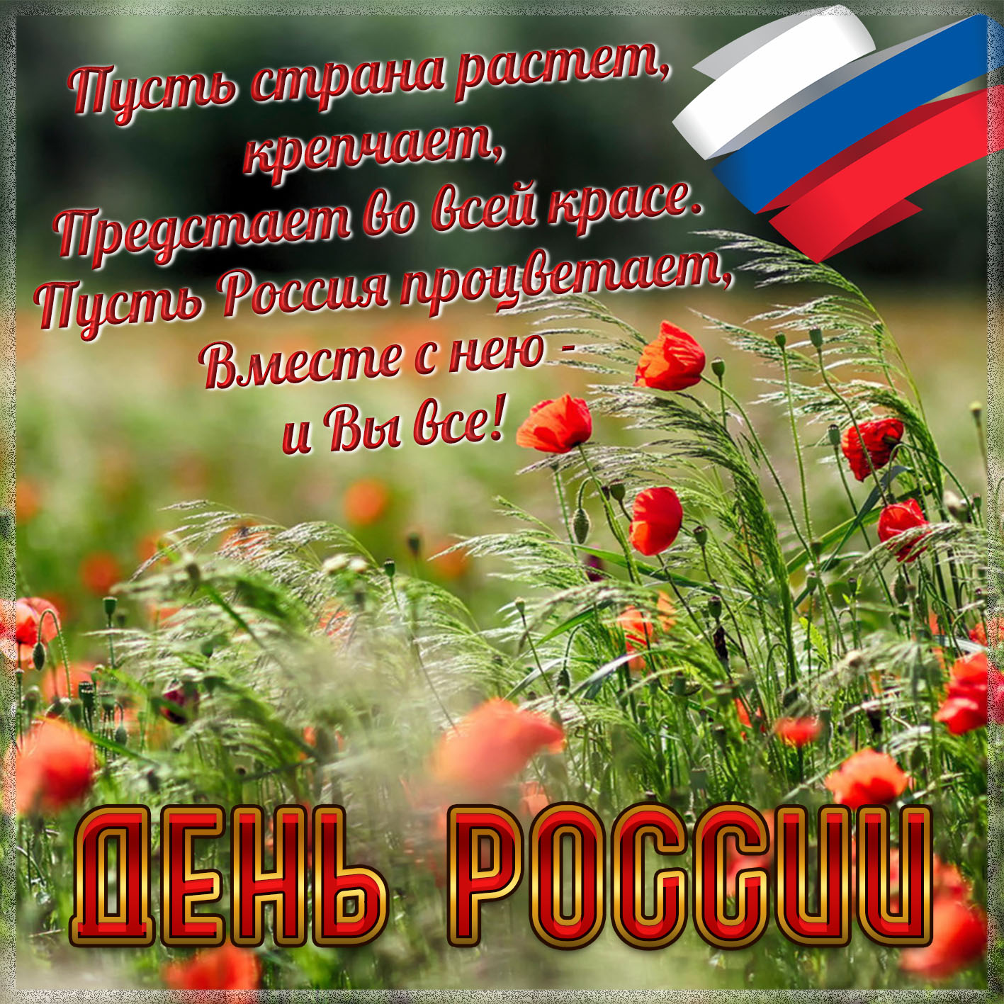 фотосъемки поздравления дня россии 12 июня диетологи считают