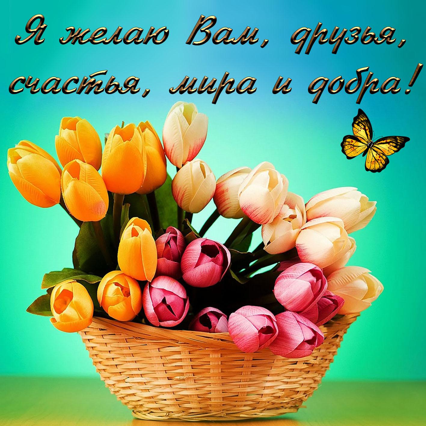 поздравление с днем рождения с пожеланиями добра и мира
