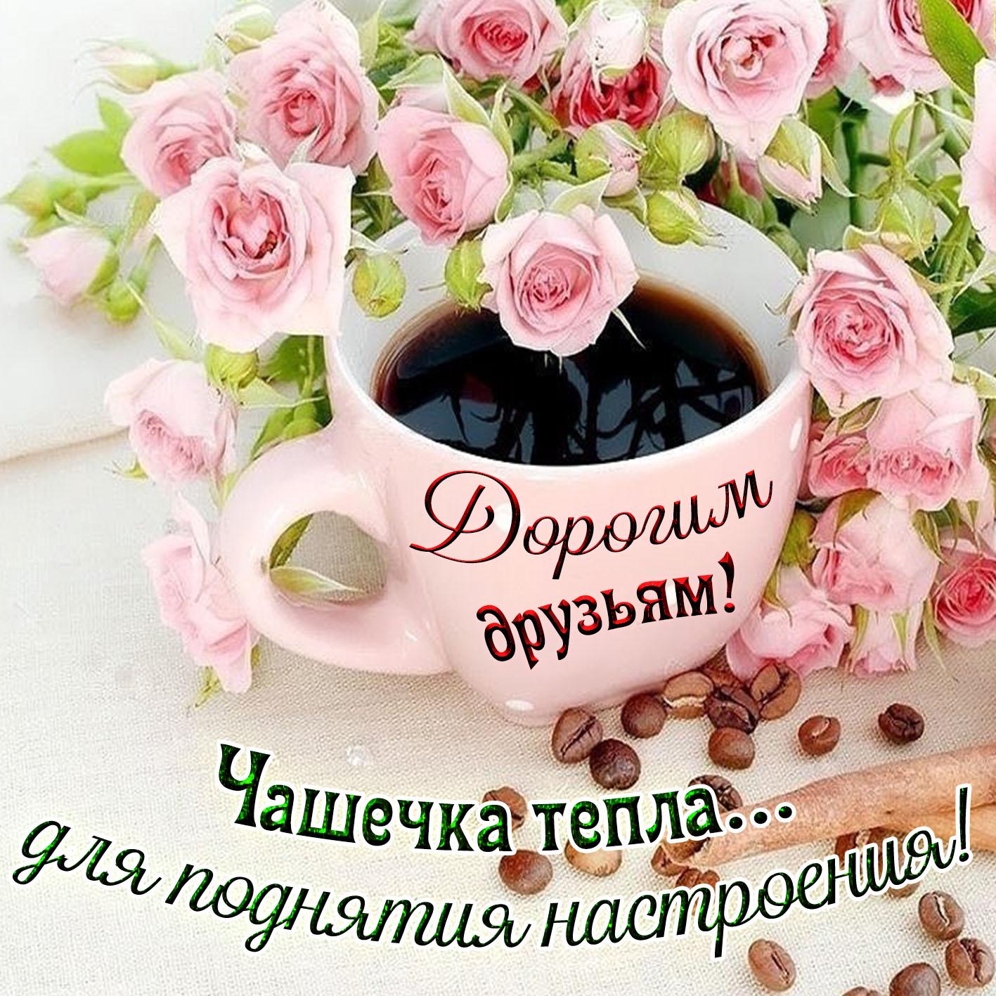 фото доброго утра и дня замечательного друзья пропитанные